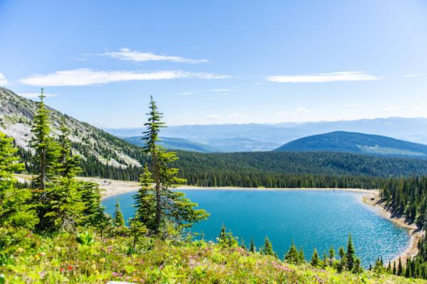 Rhonda Lake