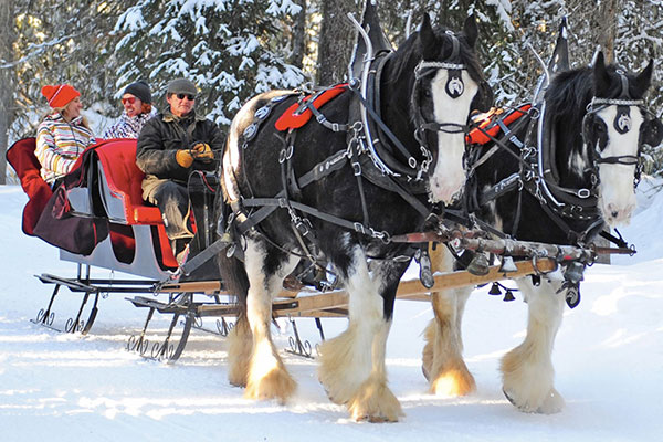 sleigh rides big white
