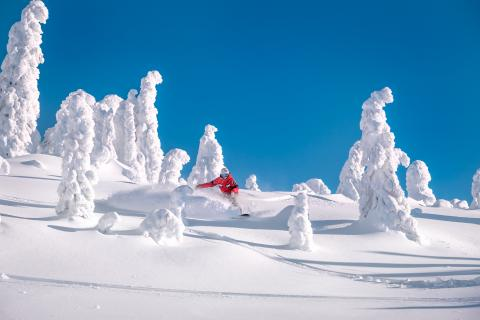 Me, my snowghosts & I